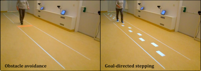 Walking adaptability for targeted fall-risk assessments