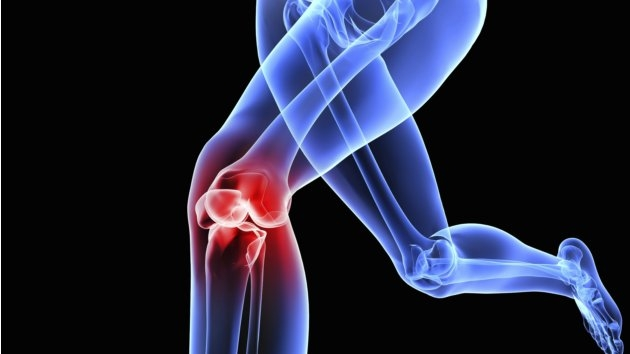 Cumulative loads in the knee joint increase at slow-speed