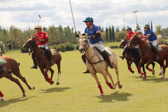 Falls and injuries to polo players