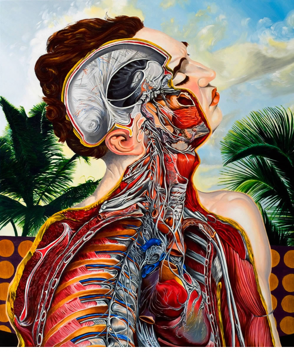 Anatomy with a melodramatic feel, by Valerio Carrubba