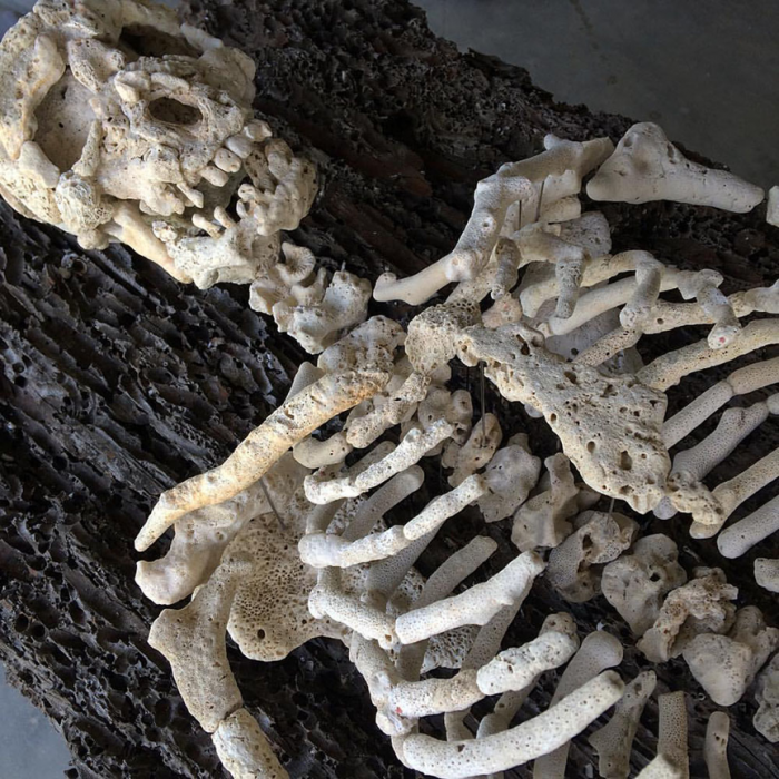 Human skeleton and body parts from coral by Gregory Halili