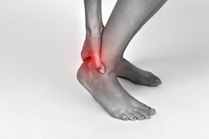 Role of inflammation in tendinopathy