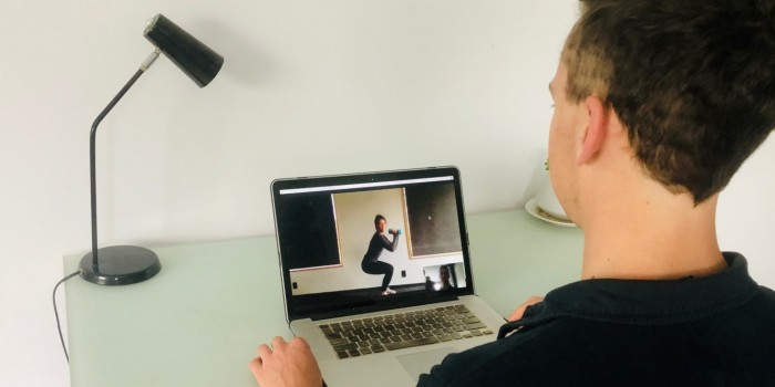 Physiotherapist and patient experiences with telehealth