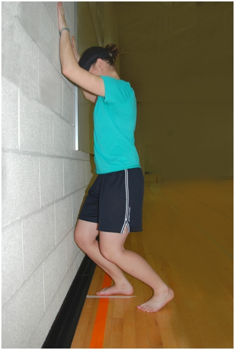 Reliability and MDC of the weight-bearing lunge test (WBLT)